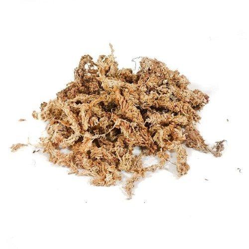 Musgo sphagnum deshidratado a granel bolsa de 75 gramos