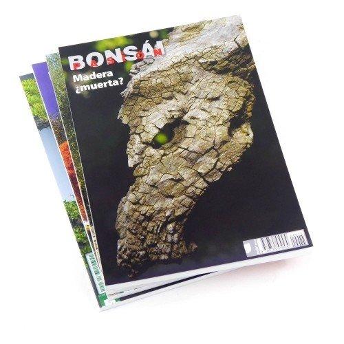 Madera ¿muerta? en bonsáis - BONSÁI PASIÓN - nº 77
