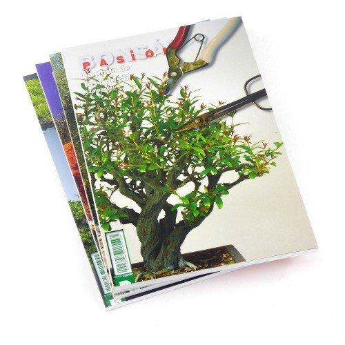 La poda de los bonsáis (2ª parte) -  BONSÁI PASIÓN - nº 83