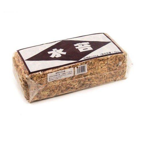 Musgo sphagnum japonés deshidratado 150 gramos