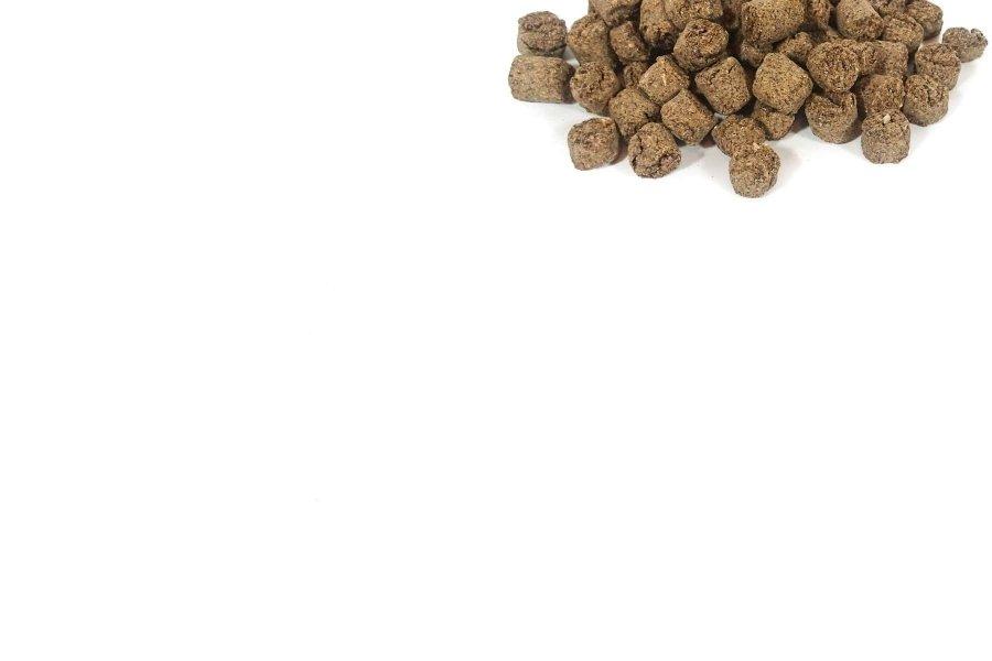 Productos para el cultivo y cuidado diario de tus bonsáis - Bonsái Do